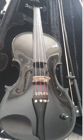 Barcus Berry, 4-String Violin (BAR-AEBK)